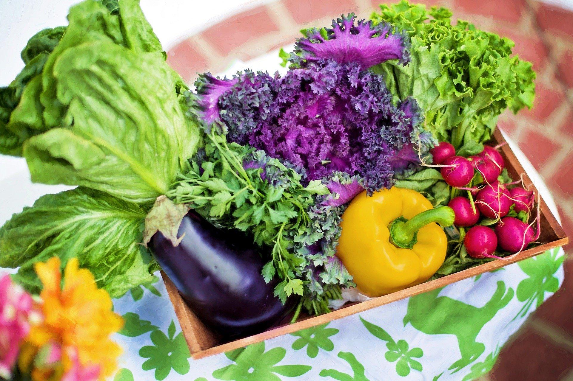 Grossansicht in neuem Fenster: Gesundes Gemüse